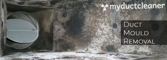 Tips & Tricks For Cleaning Black Mould From Duct.